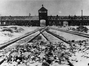 Studienfahrt nach Krakau und Auschwitz der Fachschaft Geschichte