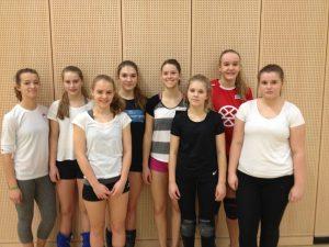 Sport Stadtmeisterschaften Volleyball